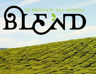 Paul Steveninck, Blend Tea